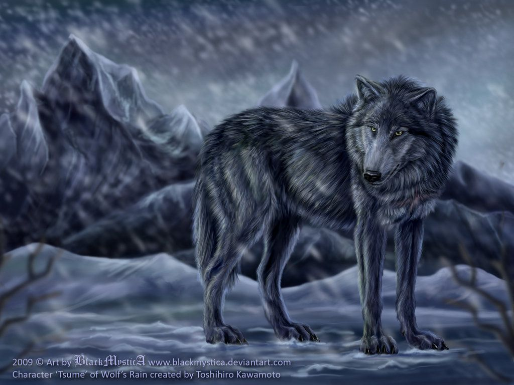 Tsume from Wolf's Rain by on