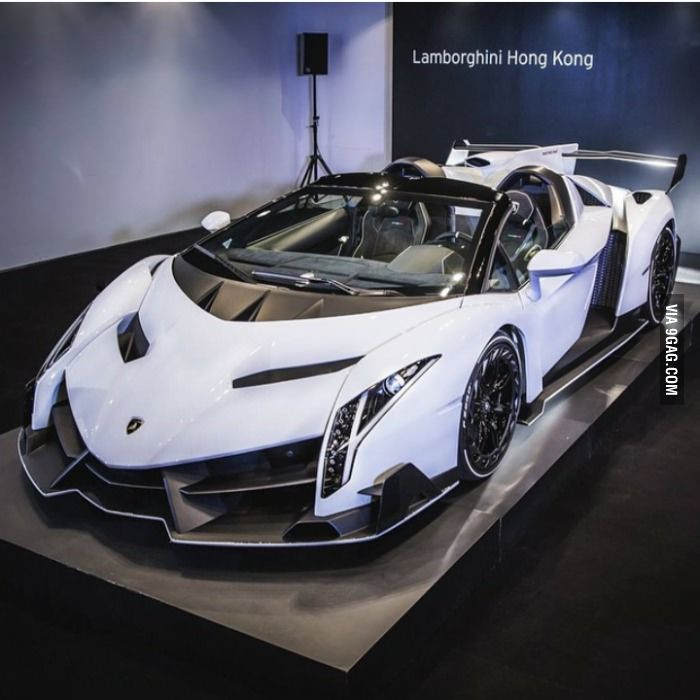 I've never seen a Lamborghini Veneno in white, I think…I think I'm in love