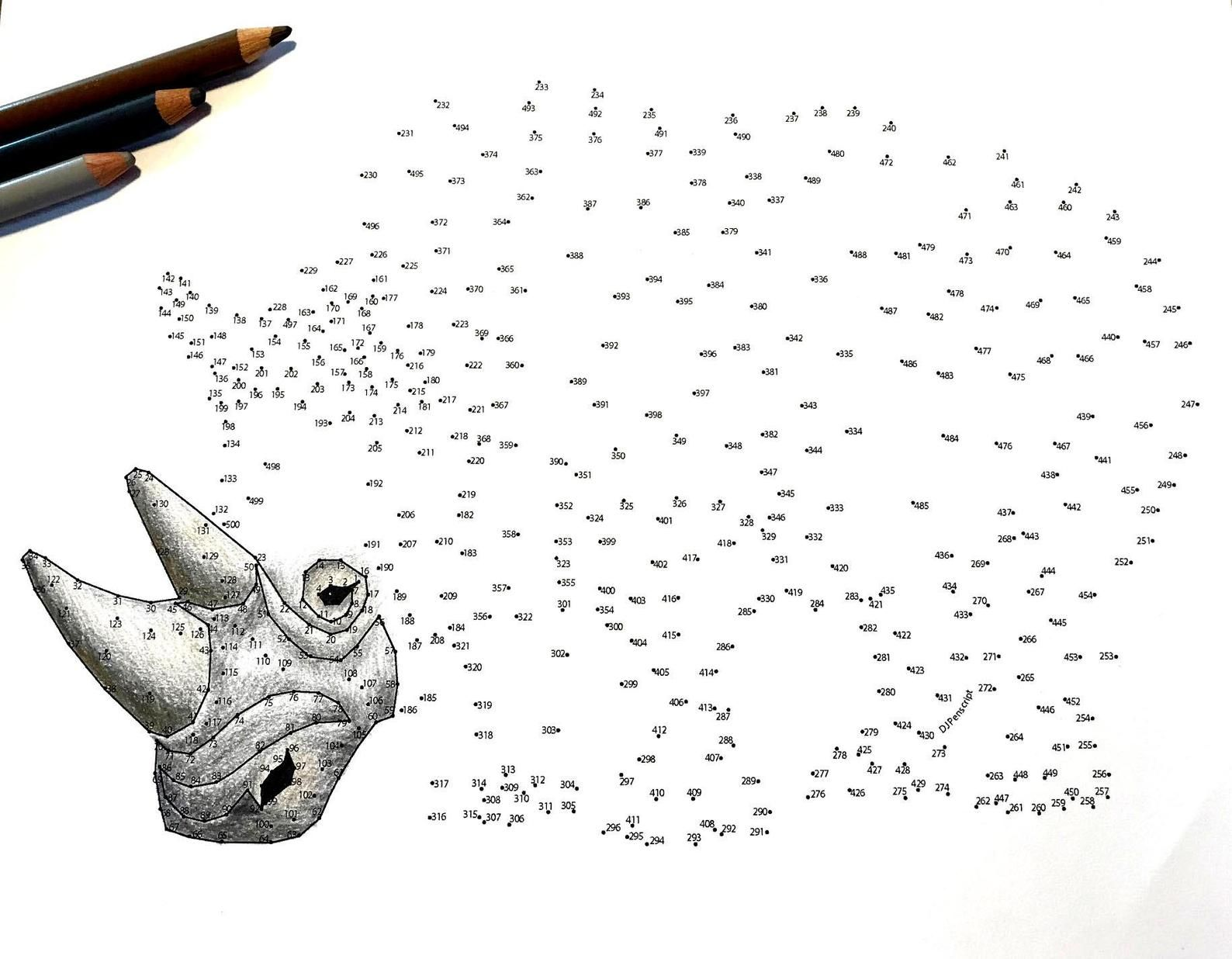 Rhino Extreme Dot to Dot PDF Activity and Coloring