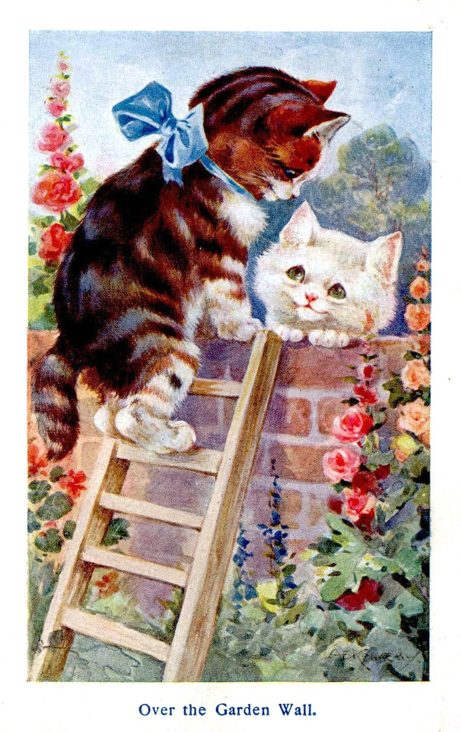 Pin By Jill Wait On Meow Mix Cats Illustration Cat Art Cats And Kittens
