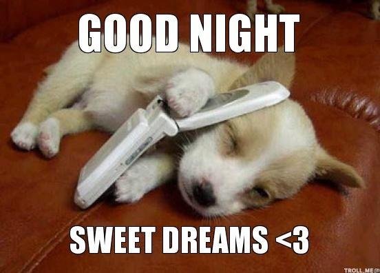 cute good night meme