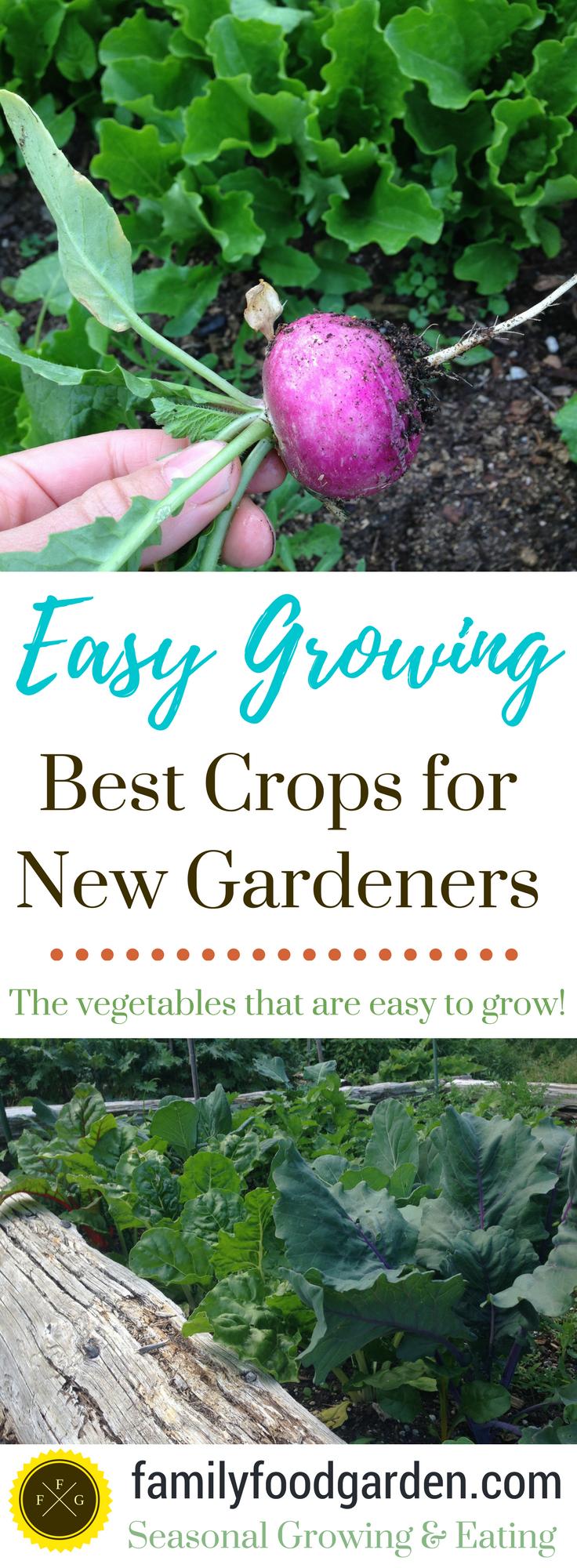 Veggie garden inspiration  The Easiest u Hardest Crops to Grow in your Garden  Gardens Easy