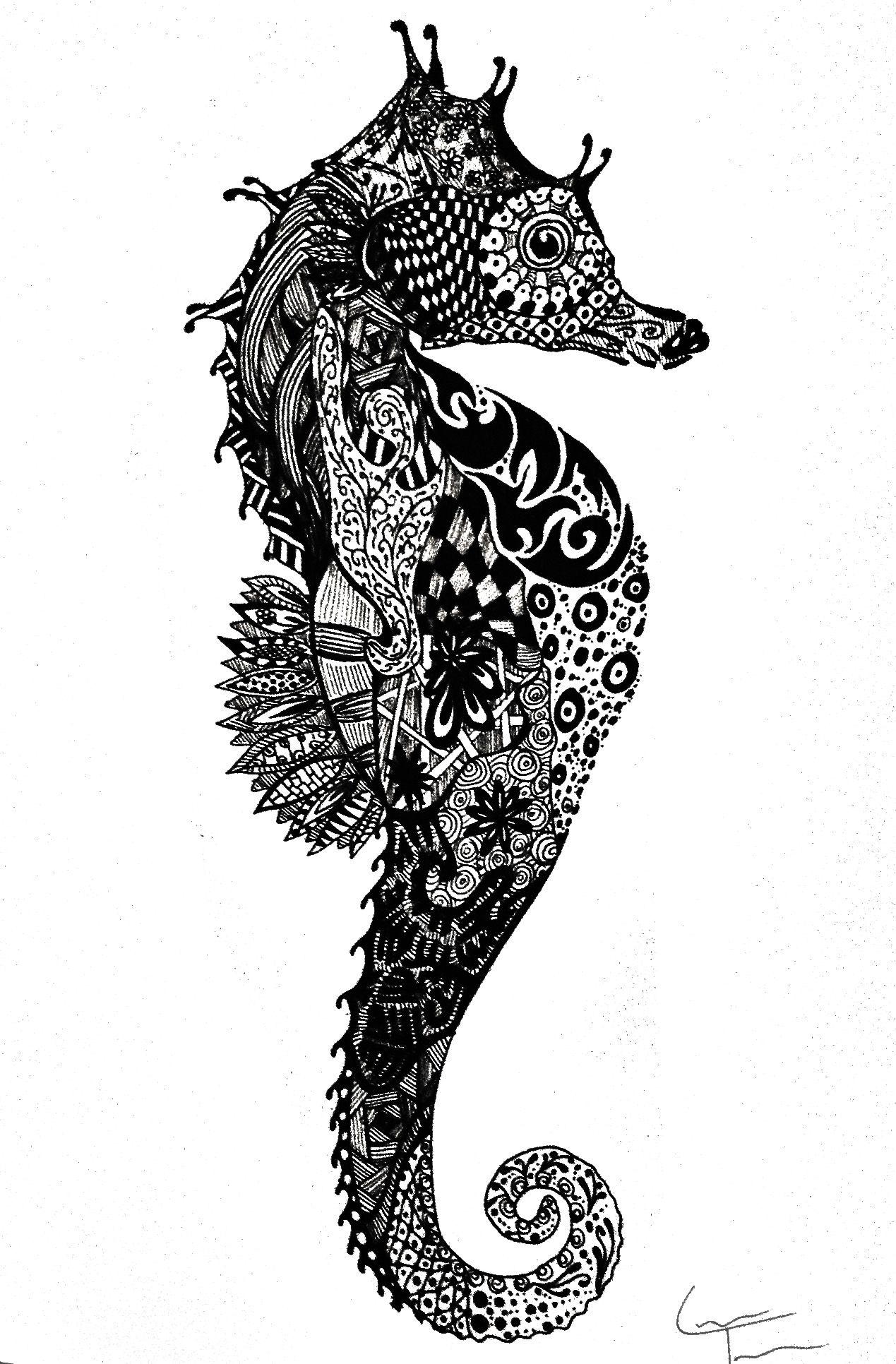 seahorse by laura telfer