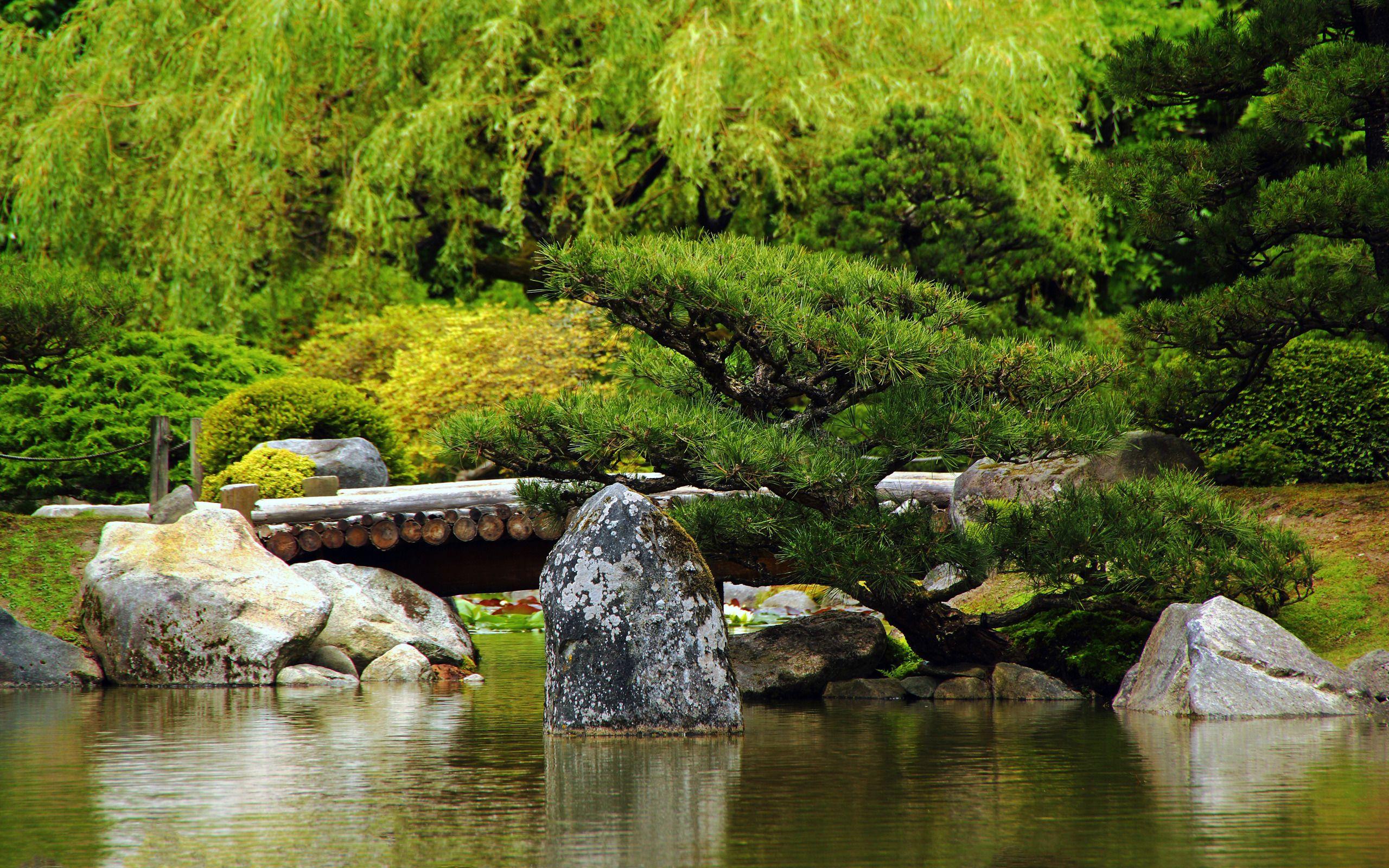 Pingl par hoccus poccus sur jardin magnifique for Conception de jardin gratuit