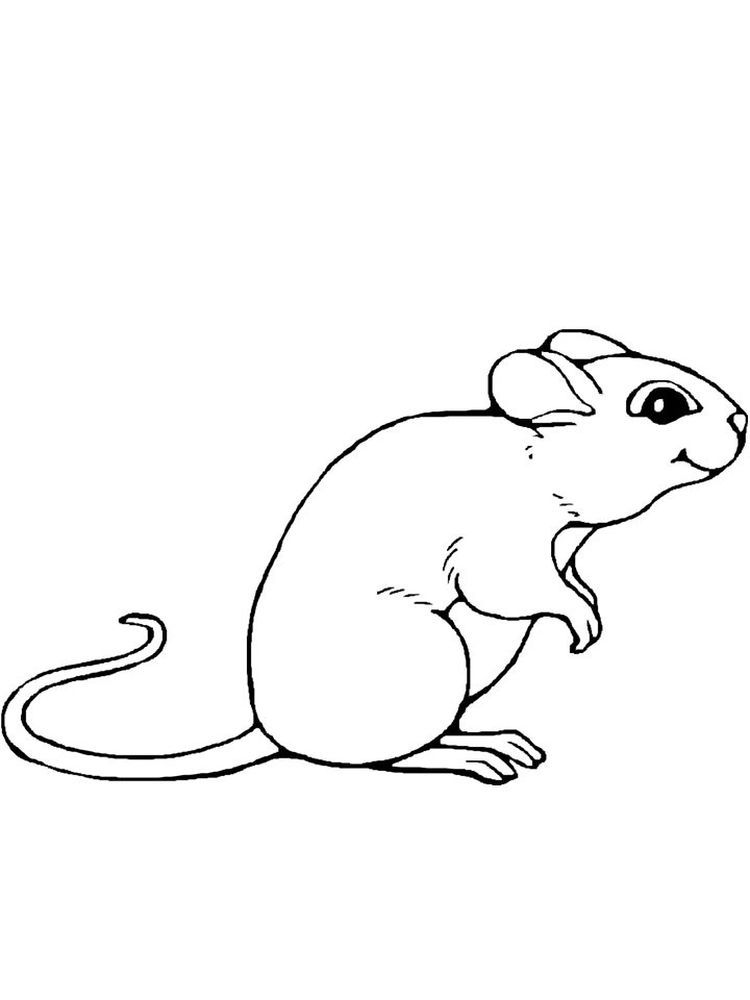 Printable Mouse Coloring Pages To Print Mickey Mouse Coloring Pages Minnie Mouse Coloring Pages Animal Coloring Pages
