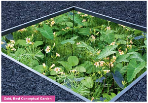 Billericay Garden Designer Rebecca Butterworth Wins Gold At Hampton Court Chelsea Flower Show Hampton Court Landscape Design