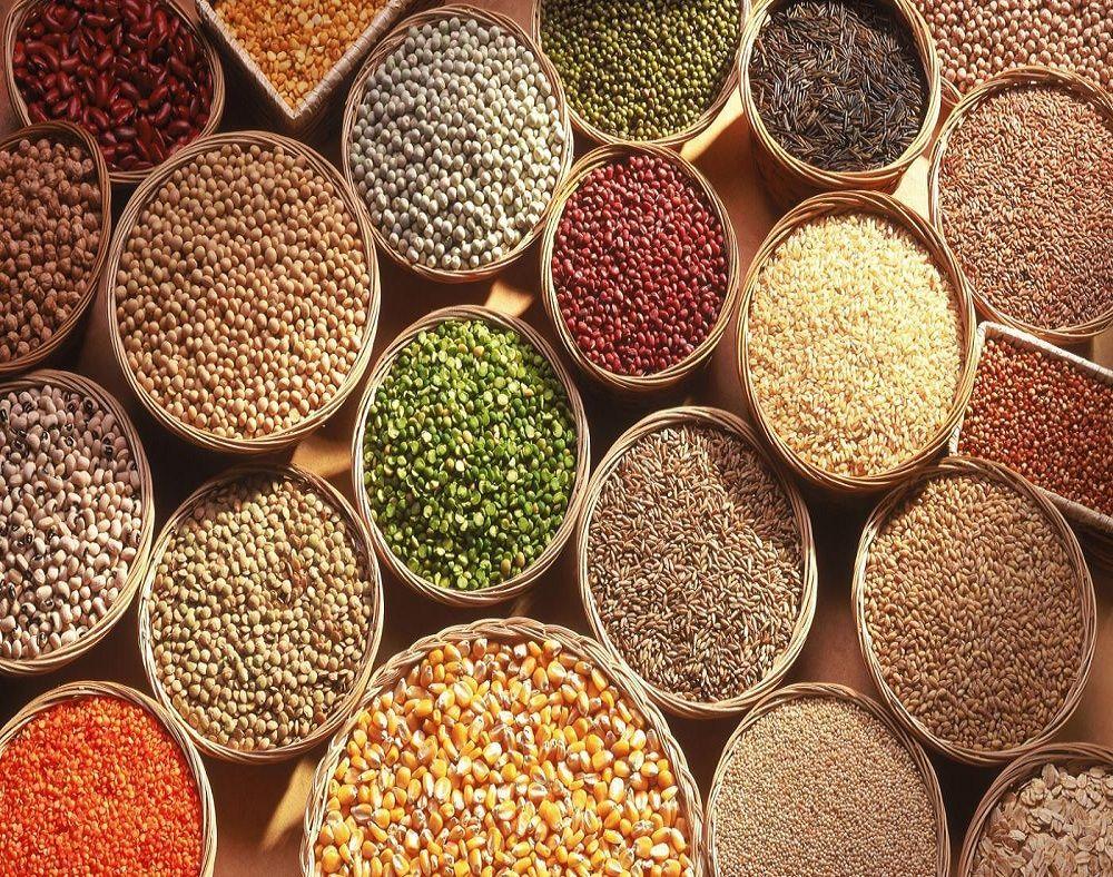 Anna University's National Seed Diversity Festival began