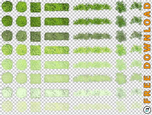 Top View Vegetation Png Graphic For Architectural Design Tonytextures Com Vegetation Landscape Architecture Graphics Trees Top View