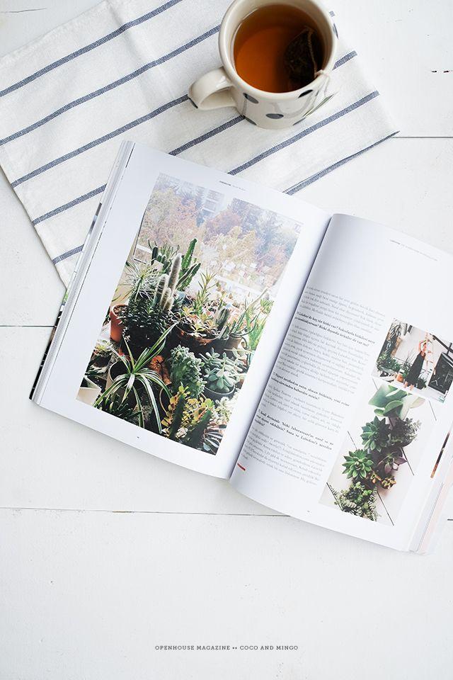 Openhouse Publication Magazine Interior Design World