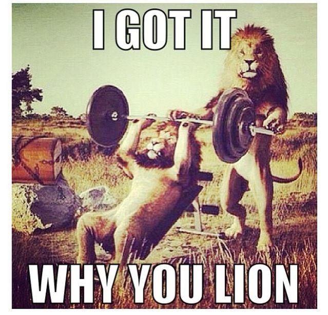 Gym Memes Gym Humor Workout Memes Gym Partner