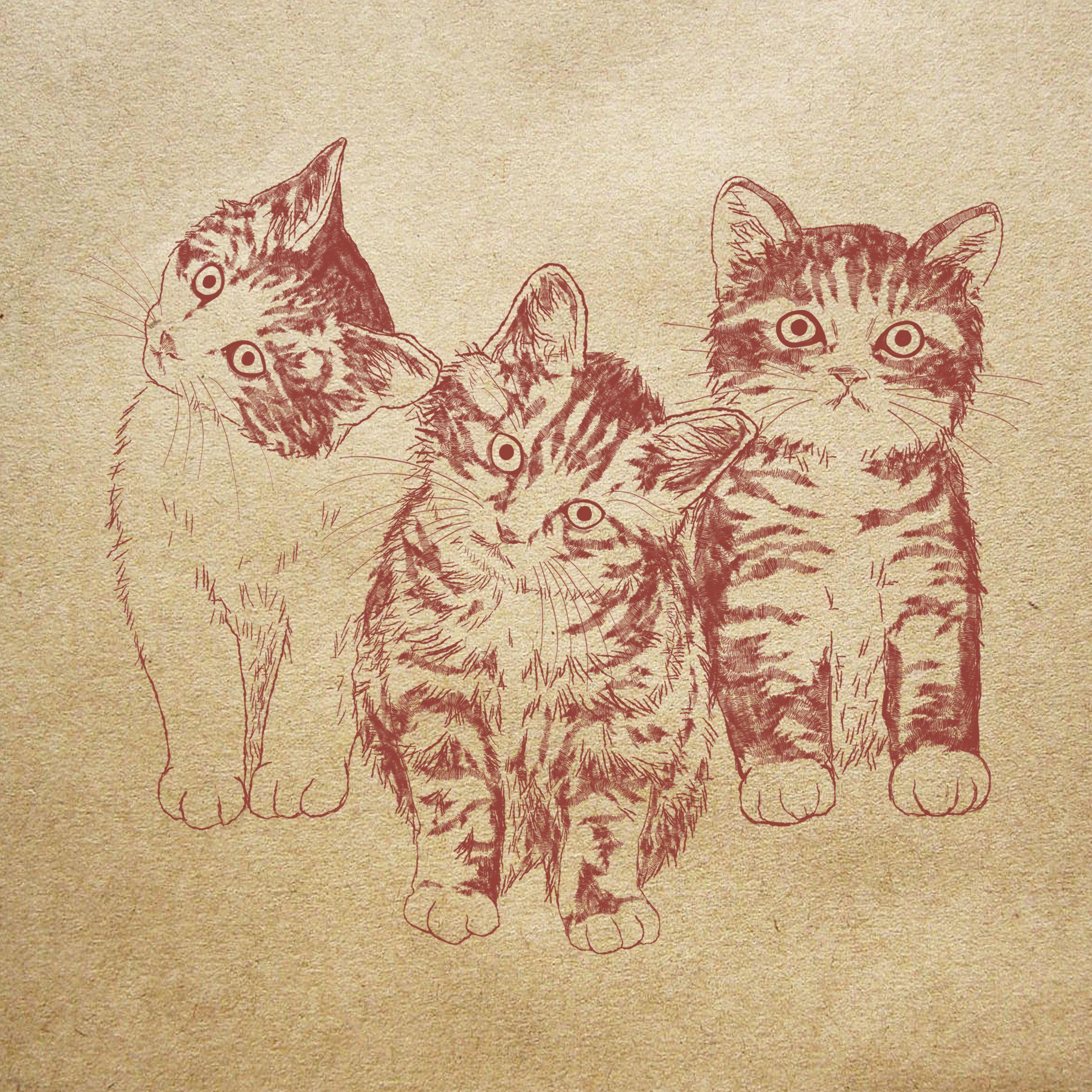 Kittens Illustration Of 365cat Art インスタ365cat Artからの子猫