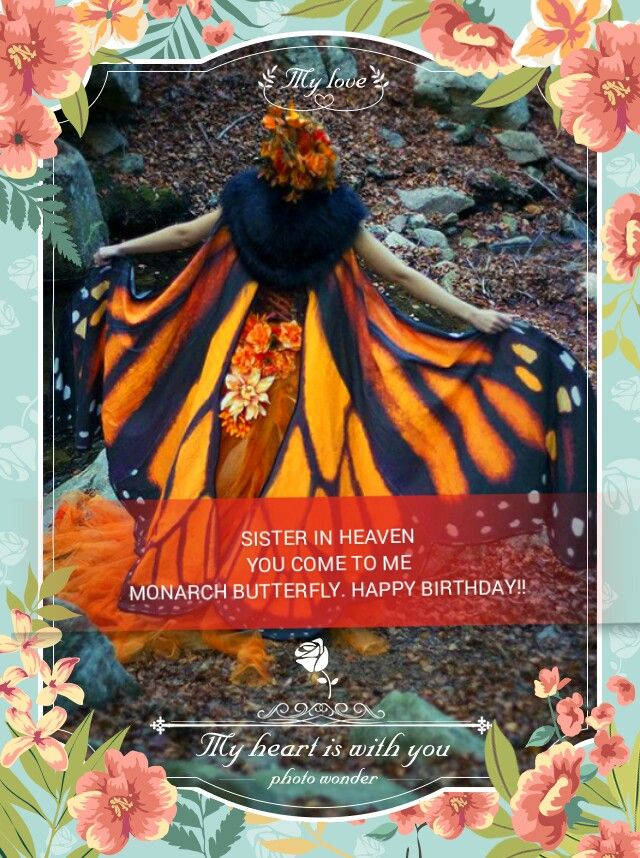 My sister comes often to visit me I know she is a monarch butterfly .MY Mom in heaven is a yellow butterfly she also comes to visit and yes I did see her today thank God she is in the arms of the Lord happy birthday sis