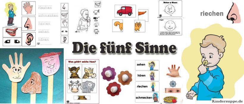 Funf-Sinne-kindergarten-projekt-Ideenjpg (820×350) Fünf