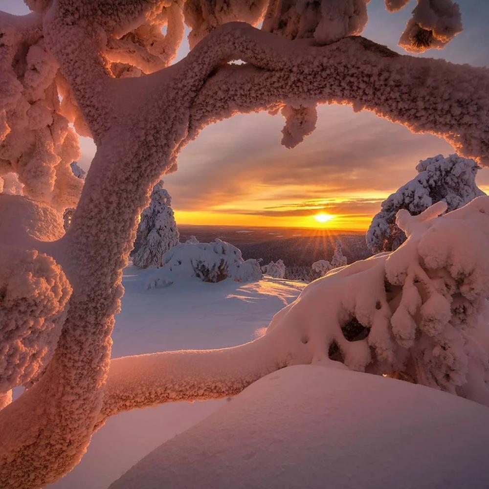 Зимняя сказка и вся красота природы в 15 фотографиях ...