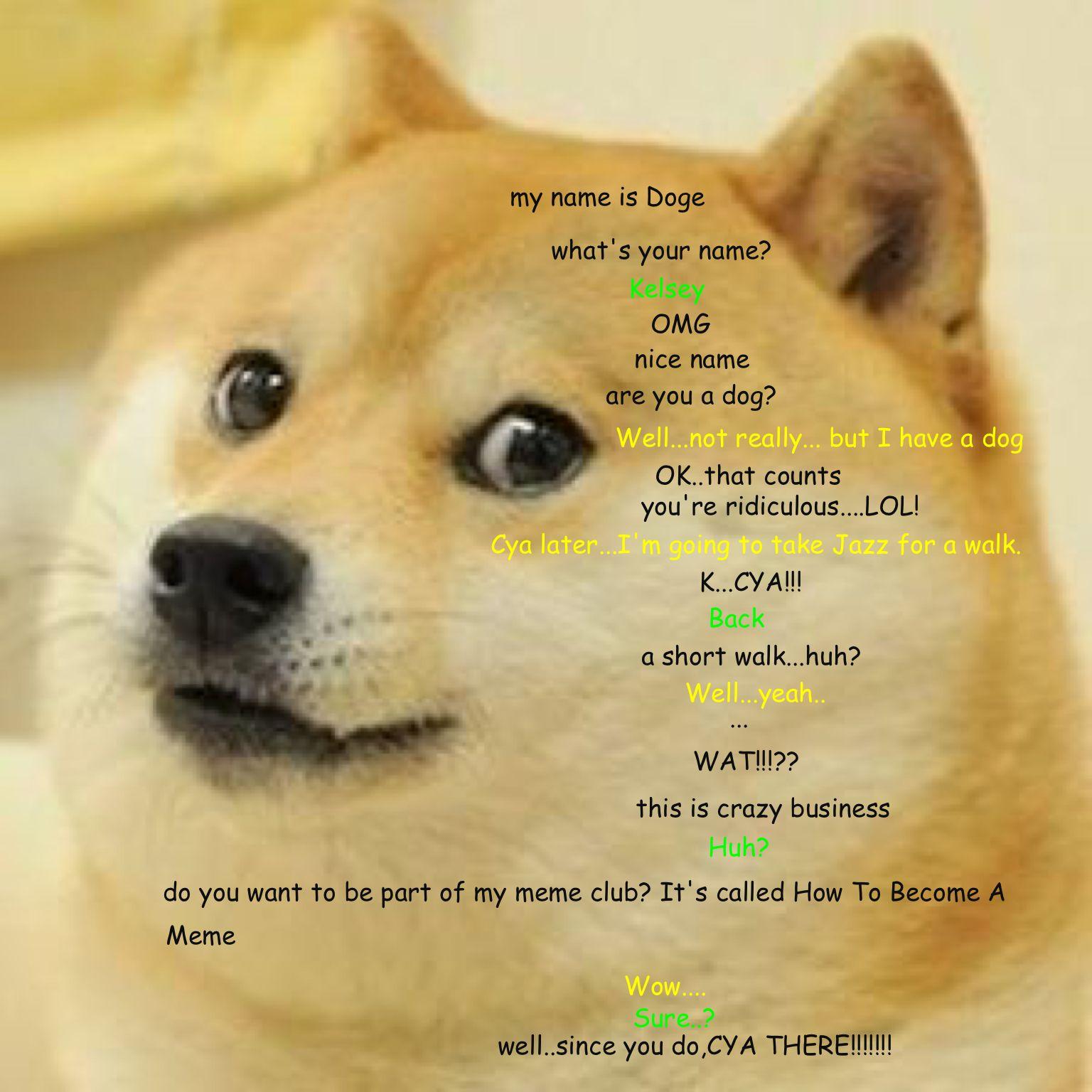 Kelsey joins the meme club Cute animal memes, Doge, Memes
