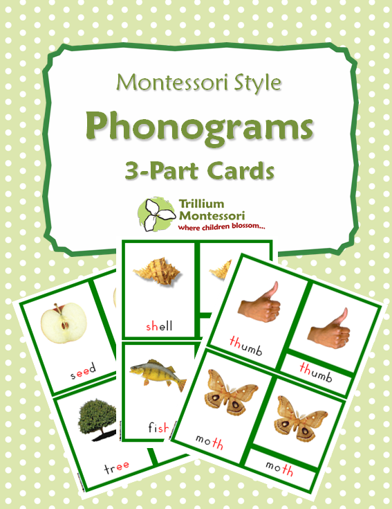 Flash Freebie: Montessori Style Phonograms 3-Part Reading Cards. Available for free until 11pm Thursday August 8th, 2013