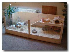 Rechteck Kafig Fur Meerschweinchen In 2 Grossen L Und Xl Xoppla Meerschweinchen Meerschweinchen Gehege Meerschweinchenstall