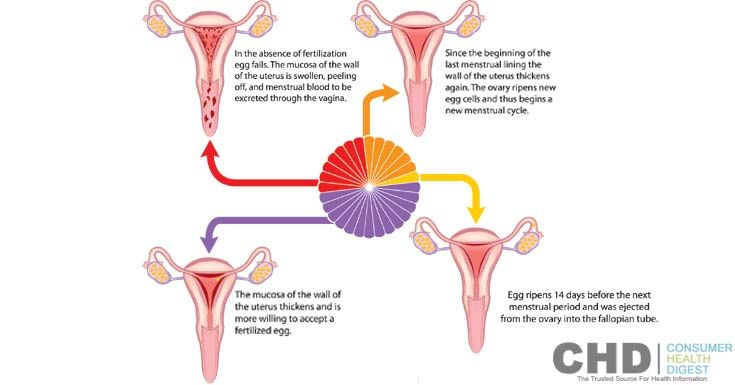 what causes bleeding after having intercourse