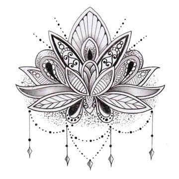 Imagenes Y Dibujos De Flor De Loto Para Tatuajes De Mujeres