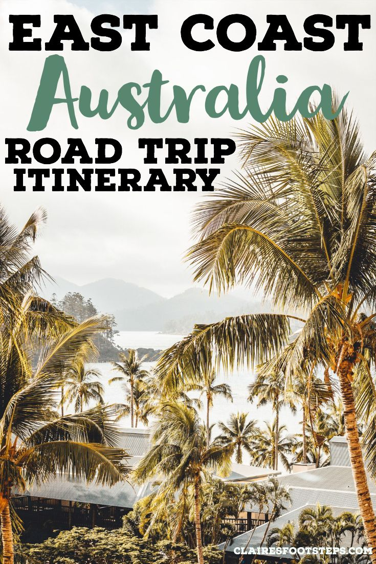 East Coast Australia Road Trip Itinerary and Ultimate Guide is part of East Coast Australia Road Trip Itinerary And Ultimate Guide - Show stopping beaches, charismatic little towns, edenlike national parks and unforgettable adrenalin filled activities mean it's no wonder why the east coast of Australia is one of the world's most…