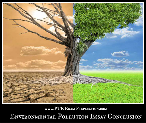 Environment pollution essay