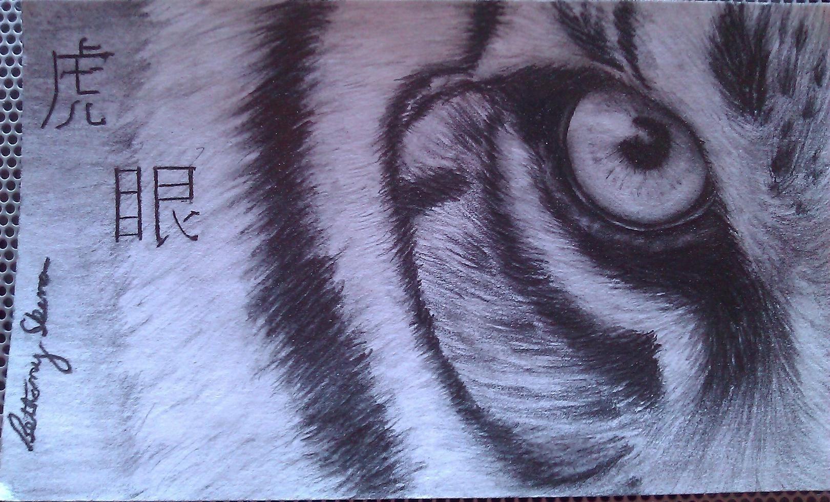 Pin By Margo Van Hecke On Art Animal Drawings Eye Drawing Drawings