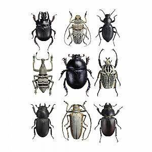 Photo of Liljebergs – Beetles Print – Black & White –  Liljebergs – Beetles Print – B…
