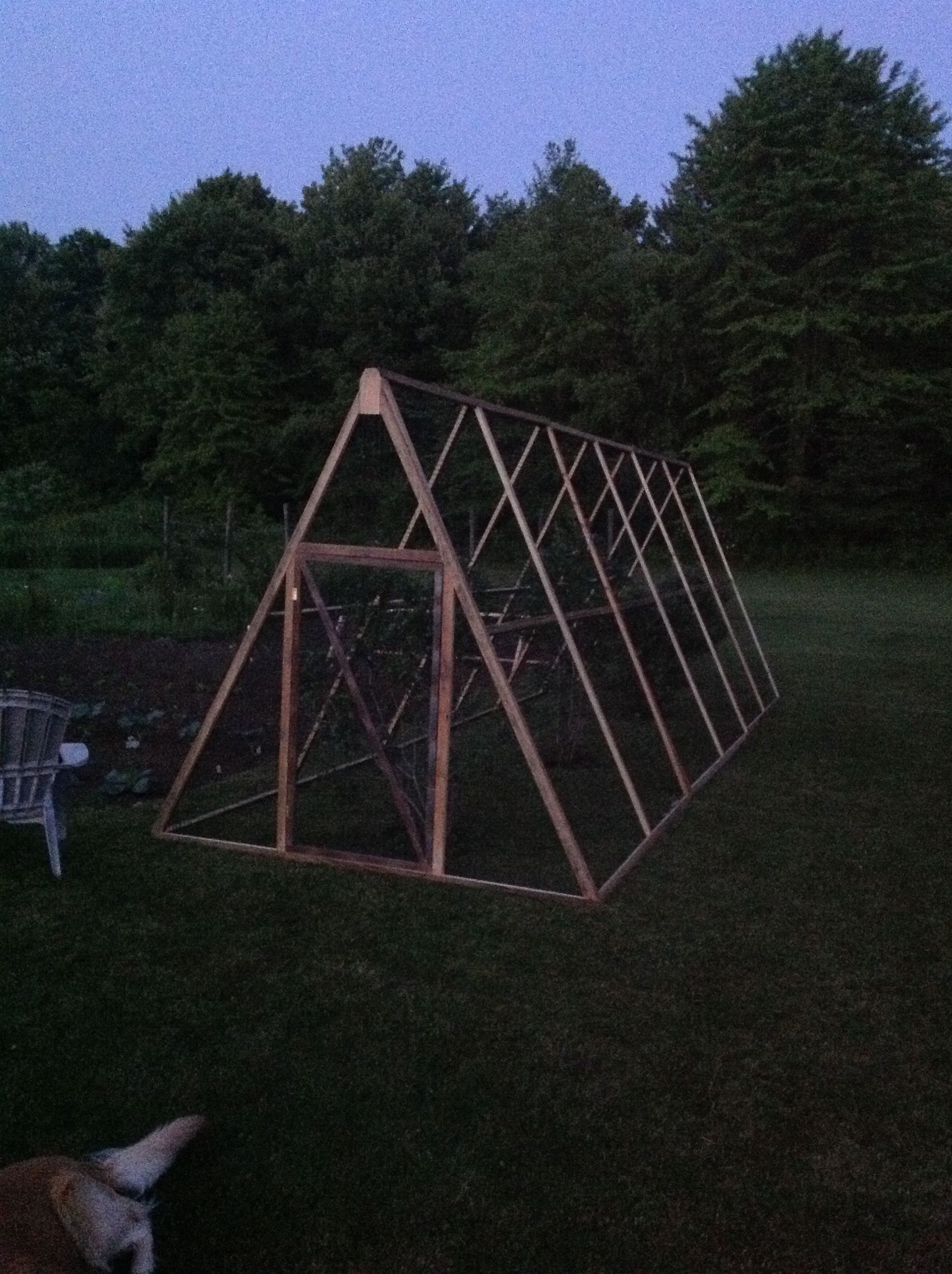 Frame And Netting Over Blueberry Bushes