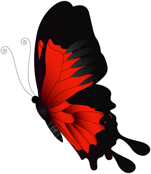 Red Flying Butterfly Png Clip Art Butterfly Art Drawing Butterfly Art Painting Butterfly Art