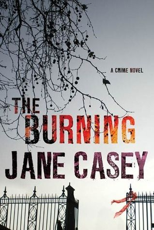 The Burning  Maeve Kerrigan, DC, is heading up the investigation of the murders of five women--beaten to death and then set aflame--in London. New series that I hope willl continue