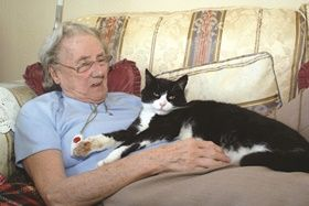 New Scottish standards for care of older patients Pets