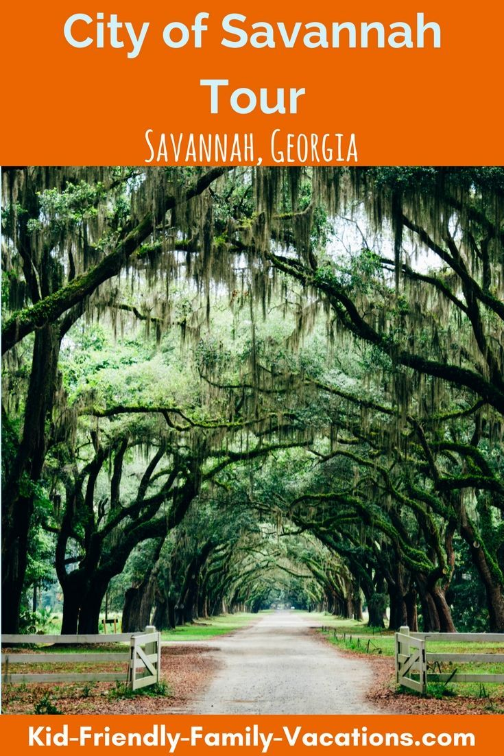 Savannah Georgia Tours - both trolley and walking tours - great ways to see this beautiful southern city and experience all its charm