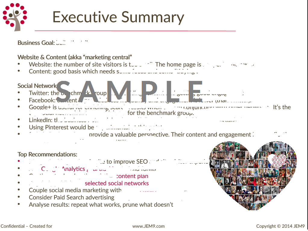 Executive Summary Example Social Media  Cerca Con Google  Social