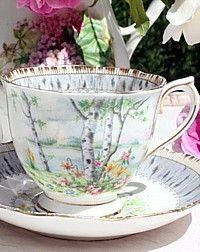 Vintage Royal Albert Silver BIrch Tea Cup & Saucer. Summer days by a lake.