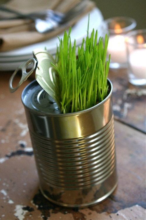 Take little glasses filled with cress and some toy animals - think this woul be a wonderful table decoration
