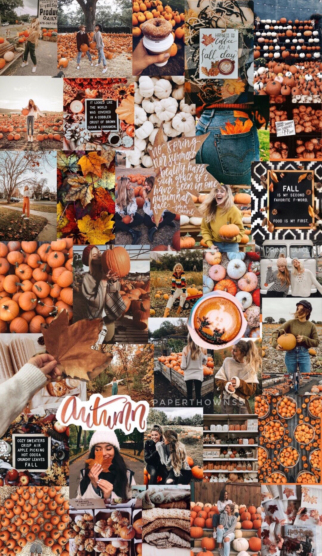 Fall Collage Wallpaper : collage, wallpaper, Autumn, Collage/wallpaper, @paperthownss, Wallpaper,, Halloween, Wallpaper, Iphone