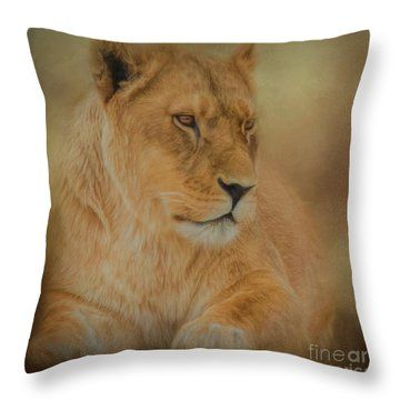 Thoughtful Lioness Square Throw Pillow These Beautiful Decorative Throw Pillows Are Availabl Animal Throw Pillows Throw Pillows Decorative Throw Pillows