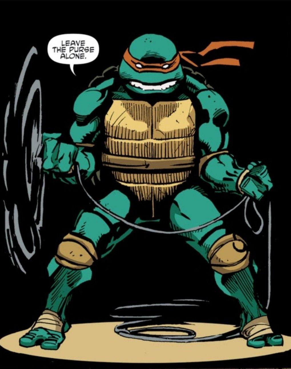 Pin By John Rabbit On Ninja Turtles Cartoon Turtle Ninja Turtles Tmnt Art