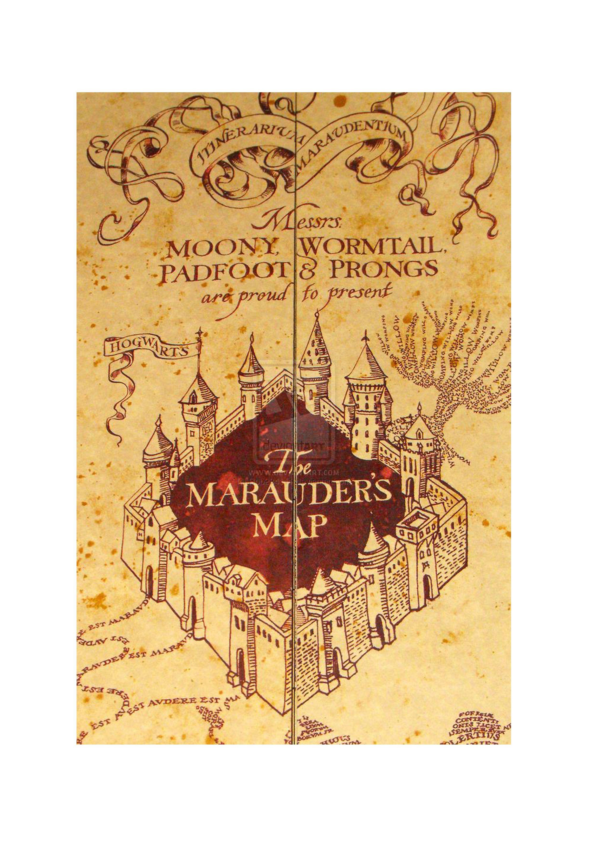 bb94c386ee260 Harry Potter World Map, Harry Potter Films, Harry Potter Spell Book, Harry  Potter