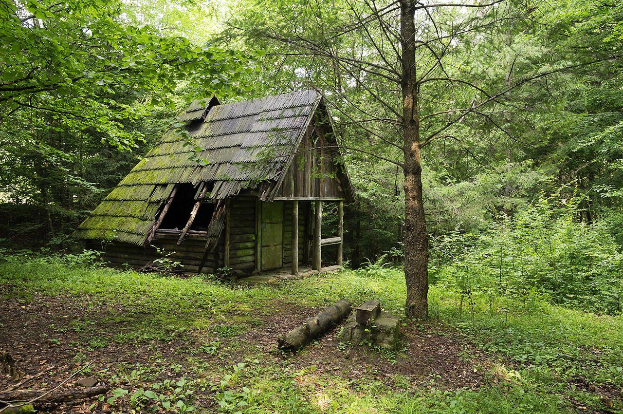 Abandoned cabin near the village of Zhornava, Transcarpathia, Ukraine.