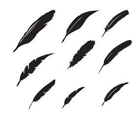 KLDezign les SVG: Des plumes...