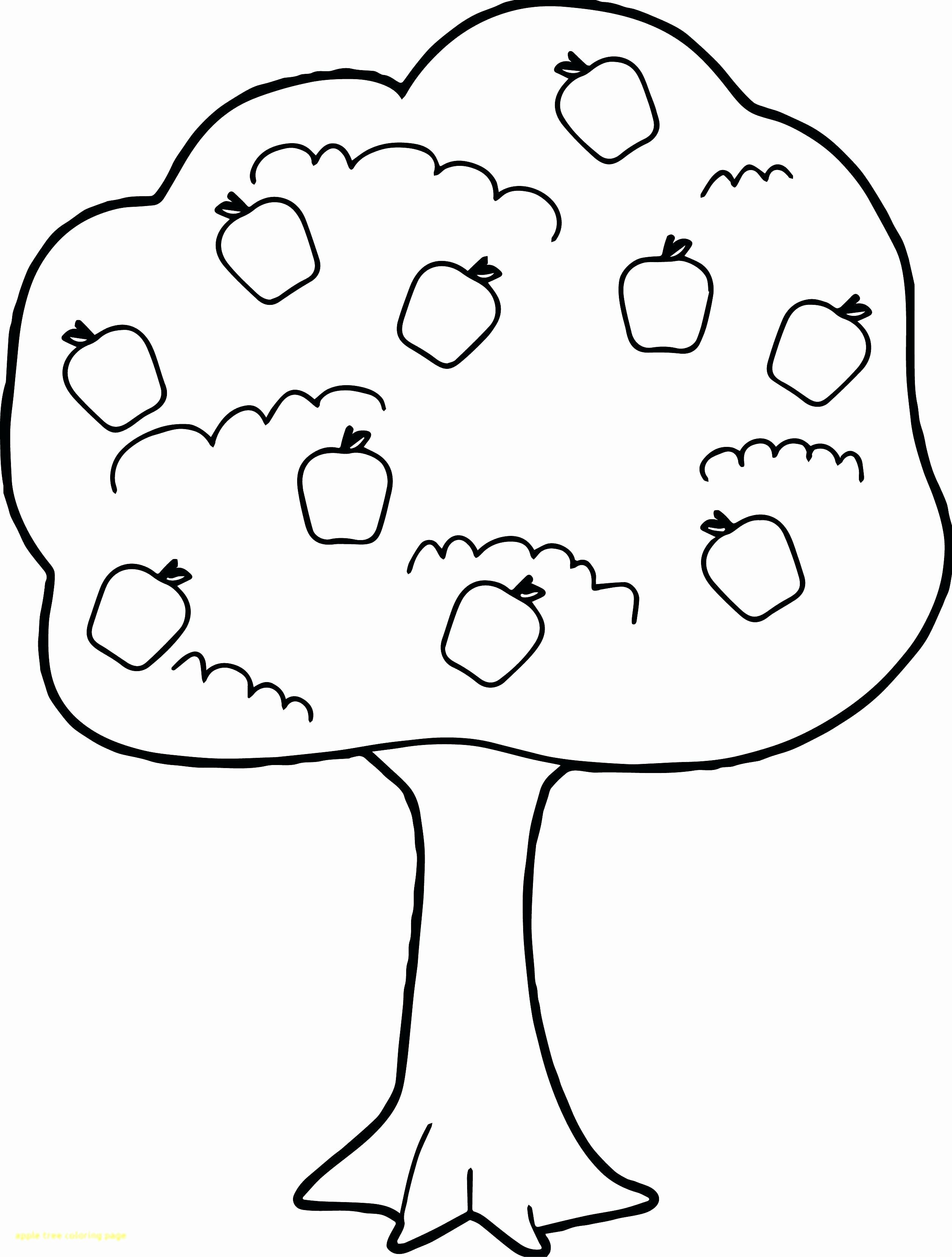 Family Tree Coloring Sheet Beautiful Coloring Pages Of