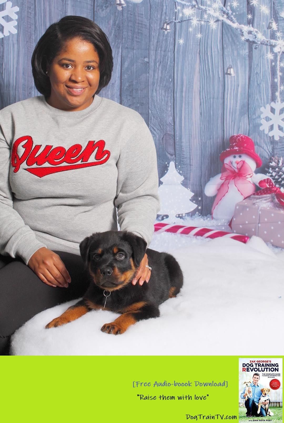 Happy 50daysofdogmas Rottweiler Puppies Are Still Available
