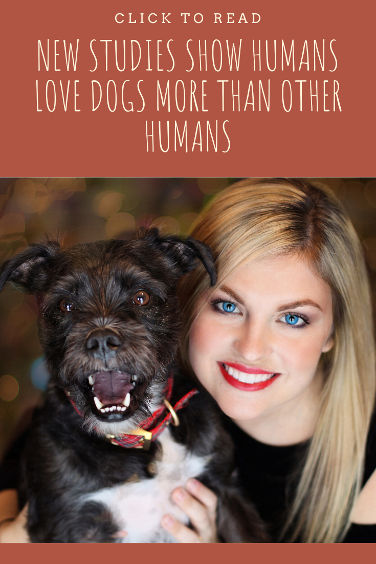 New Studies Show Humans Love Dogs More Than Other Humans Funny Animals Dogs Funny Animal Videos