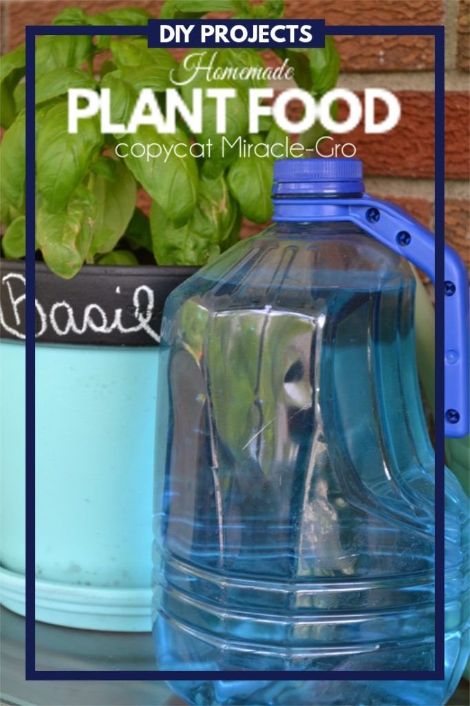 This Homemade Plant Food Is A Simple Diy Project That Only Takes A