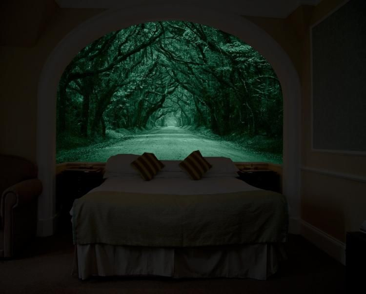 Glow In The Dark Wall Mural That Makes It Look Like You Have A