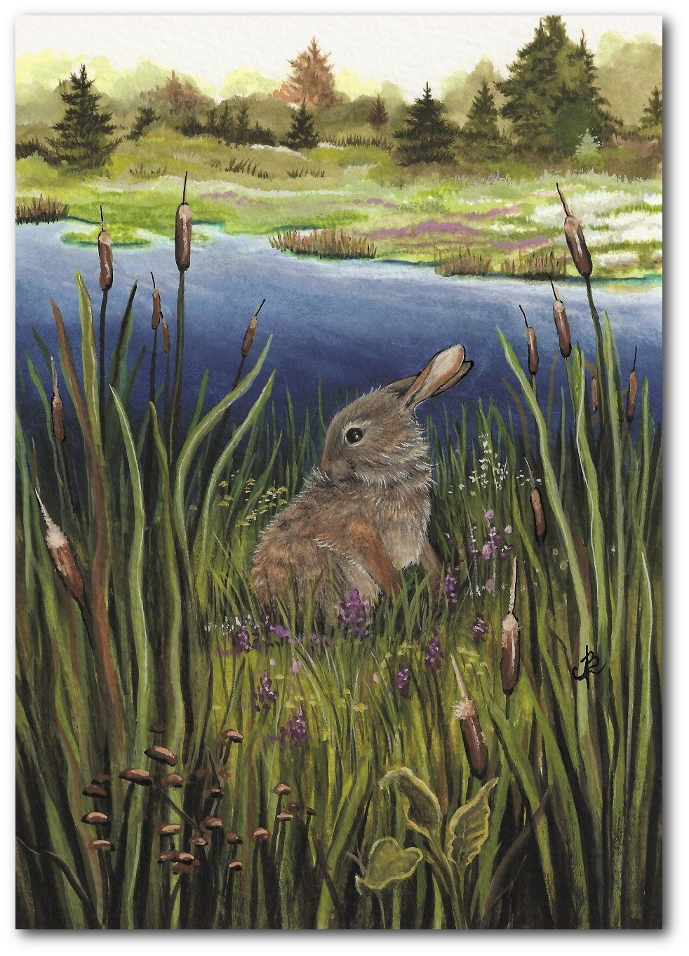 Cattails and cottontail rabbit