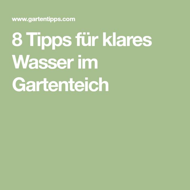 8 Tipps Für Klares Wasser Im Gartenteich Gartenteich Garden