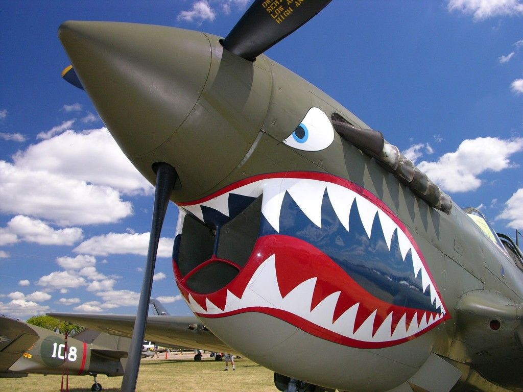 Most Incredible Airplane Nose Art Ocean Life Nose Art