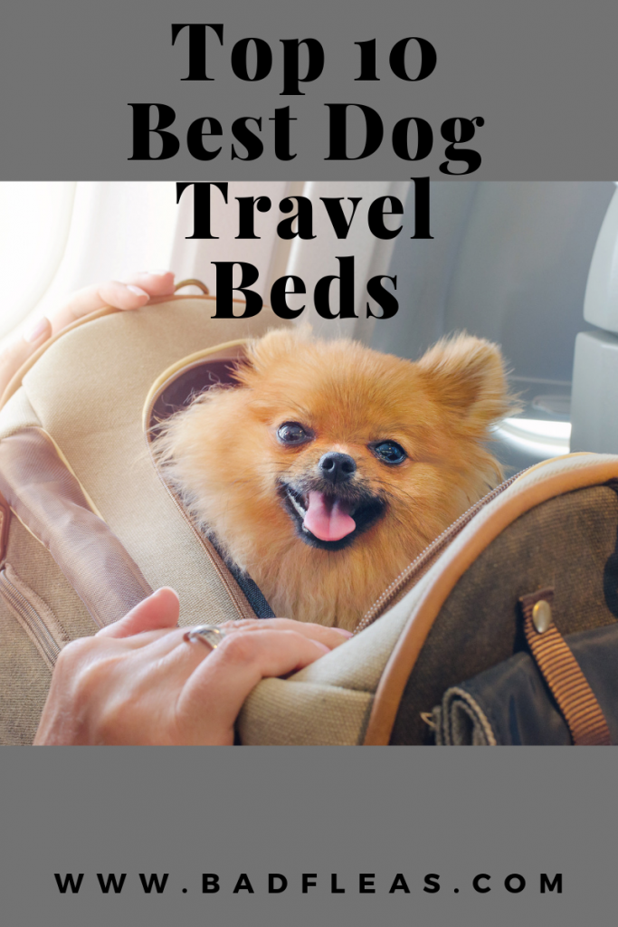 Top 10 Best Travel Dog Bed (Indestructible Travel Dog Bed